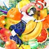瑠藺奈(るいな)「Fruits world」Photoshop CC